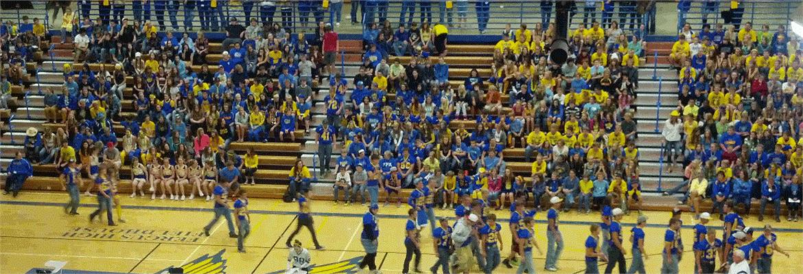 2014 Homecoming Pep Assembly