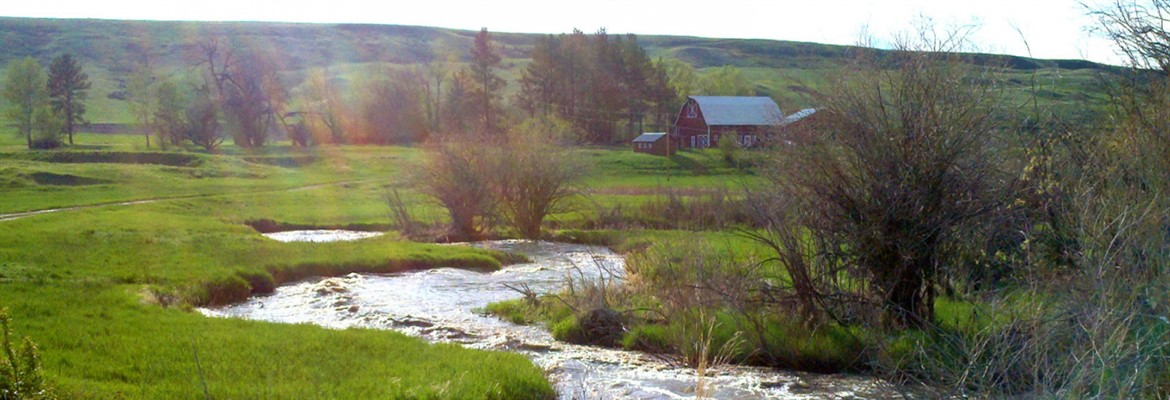 Big Spring Creek & old Poor Farm